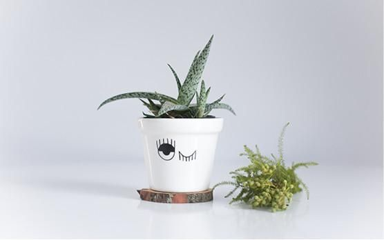 Plant a seed in one of our Planters