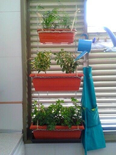 Plants in my outdoor laundry room (diy vertical garden)