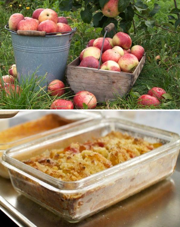 Apfel Lagerung