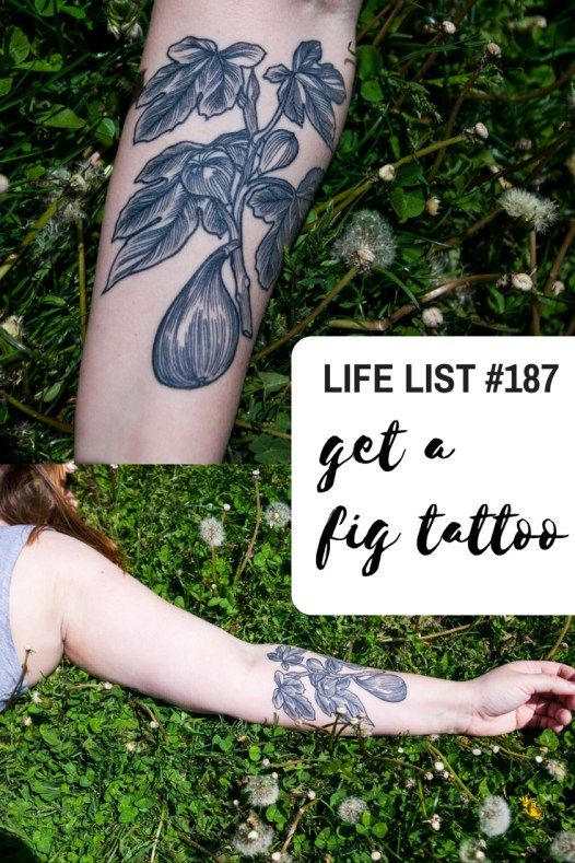 42 best fig tattoos images on pinterest figs fig tree for Fig tree tattoo