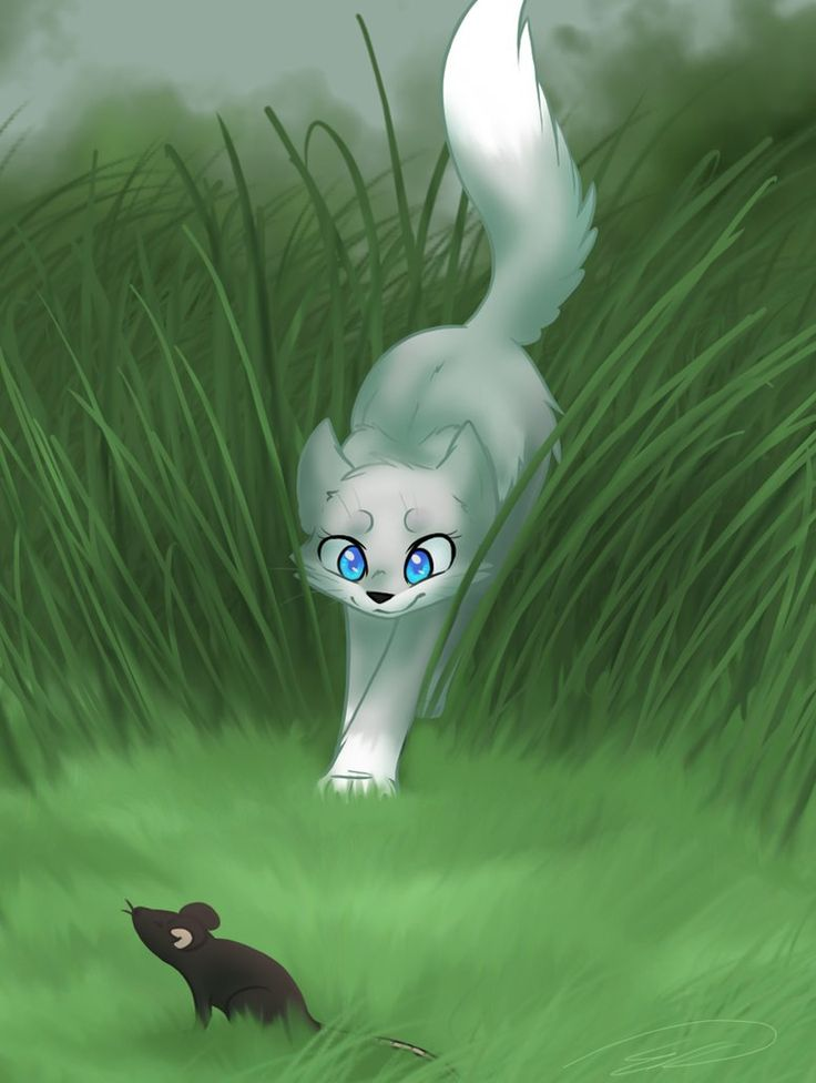 Next Competition: Draw your OC hunting their favorite prey! Due on September 21, Good Luck!~Jackie Stooks