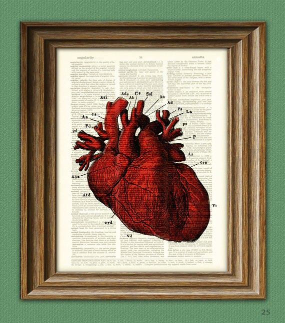 Its a RED HUMAN HEART diagram beautifully upcycled dictionary page book art print