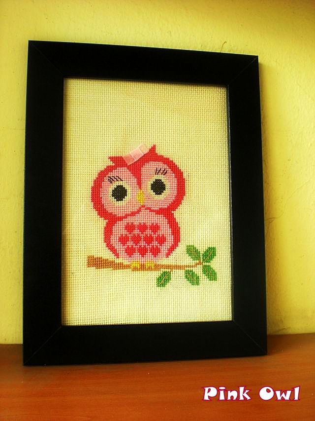 My Pink Owl