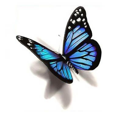 A great 3D realistic blue butterfly tattoo design.