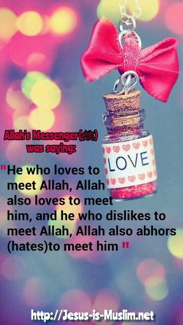 #Hadith #Love #hate #Allah #Islam #Quotas #Messenger #Mohammad #WhoDoYouLove #God #Lord #WhoIsMohammad Http://Jesus-is-Muslim.net