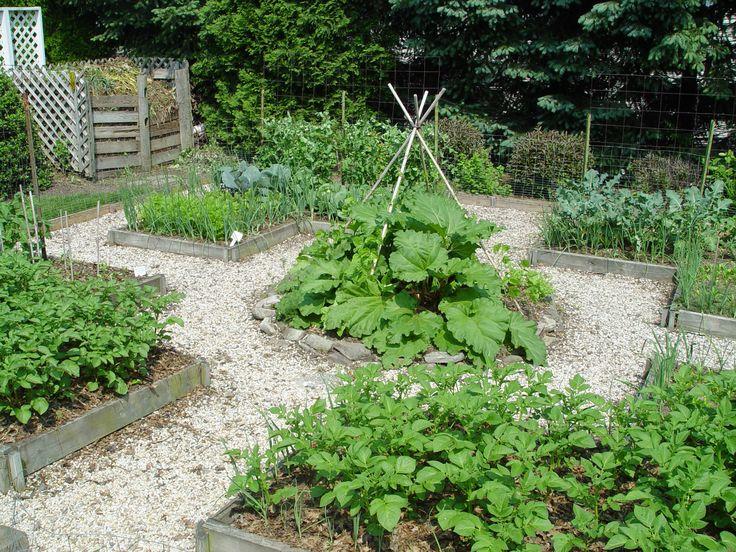 17 best images about vegetable garden design on pinterest for Ornamental vegetable garden design