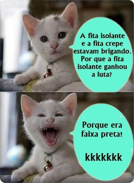 Gato no Face