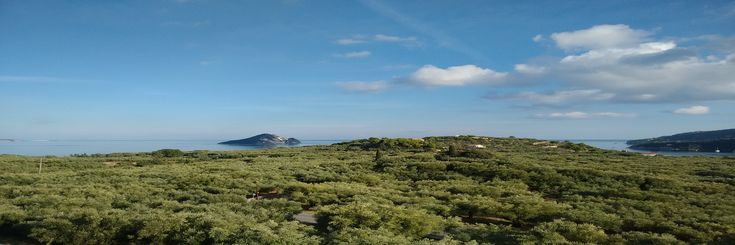 Camminando camminando…due passi nelle Isole Ionie #barcaavela #vela #sailingboat #sailing #moana60 #imoca #cruise #crociere #baie #sup #greece #Zakynthos #kefallina #Ithaki #travel #vacanze #viaggi #estate #spiagge