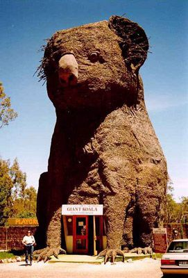 The Big Koala - Dadswells Bridge, VIC, Australia