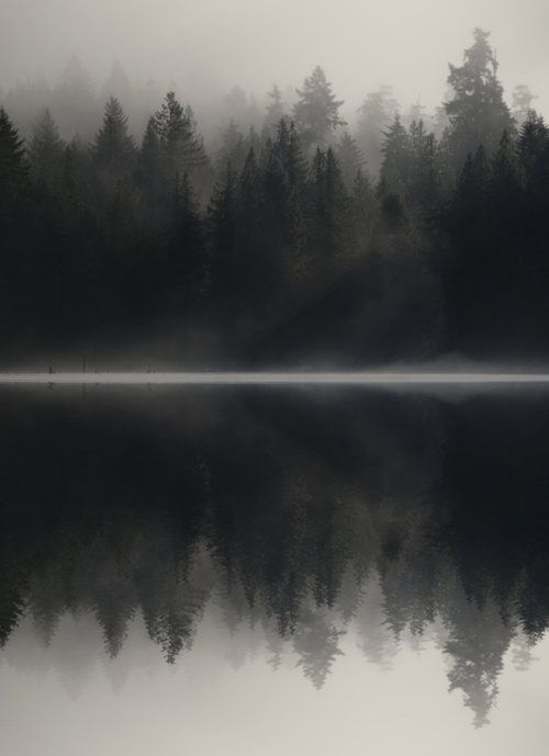 Non aveva mai visto il lago in quelle ore del mattino e sembrava tutto molto misterioso... Una calma irreale ammutoliva qualsiasi suono, poca nebbia sulle acque oscurava la riva e rendeva scenografico il piccolo angolo di paese. - Le Ombre dell'Alba.
