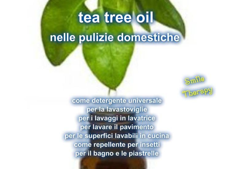 Le proprietà del tea tree oil sono molteplici  per la salute e dato che la nostra s alut e dipende anche dall'amb i ente dove vivi am...