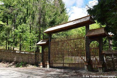 TUDOR  PHOTO  BLOG: In Muntii Gutai din Maramures,In the Gutai Mountai...