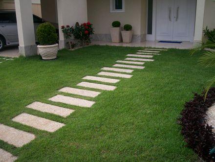 plantas para jardim rasteiras - Pesquisa Google
