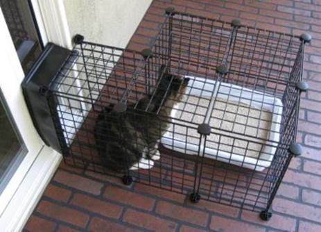 outdoor litter box exit window - Google Search