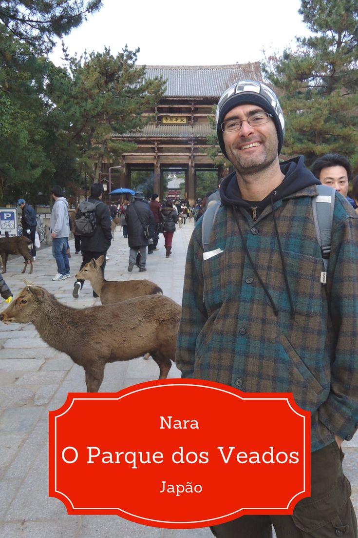 O Parque dos Veados em Nara, no Japão, abriga, além dos templos, mais de 1.000 cervos mansos (shika), que andam soltos e passeiam calmamente entre os visitantes. Bom, nem sempre!