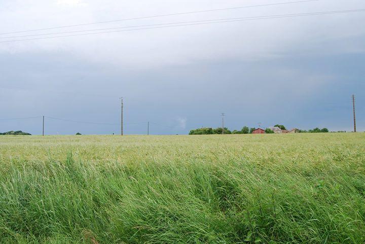 Bon lundi Loiretains !  Les prévisions météo pour cette semaine: pluie faible aujourdhui jusquà dimanche avec des températures atteignant 20C vendredi.  Pour plus d'informations visitez notre site www.meteoloiret.fr