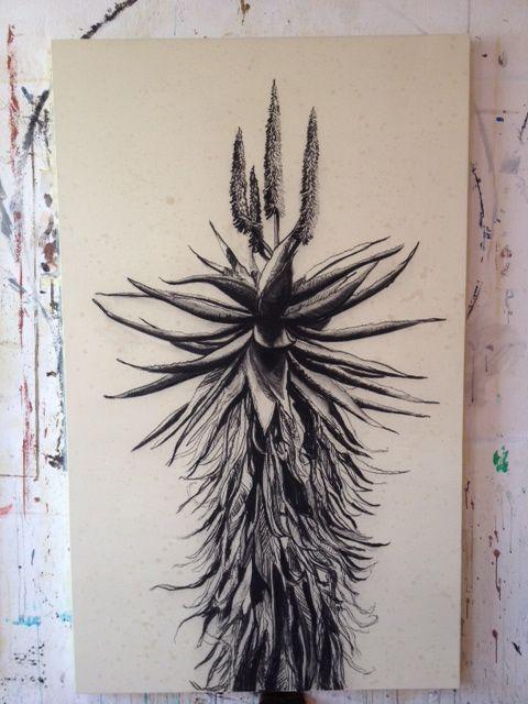 kurt pio  - aloes - charcoal