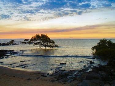 Harvey Bay Australia