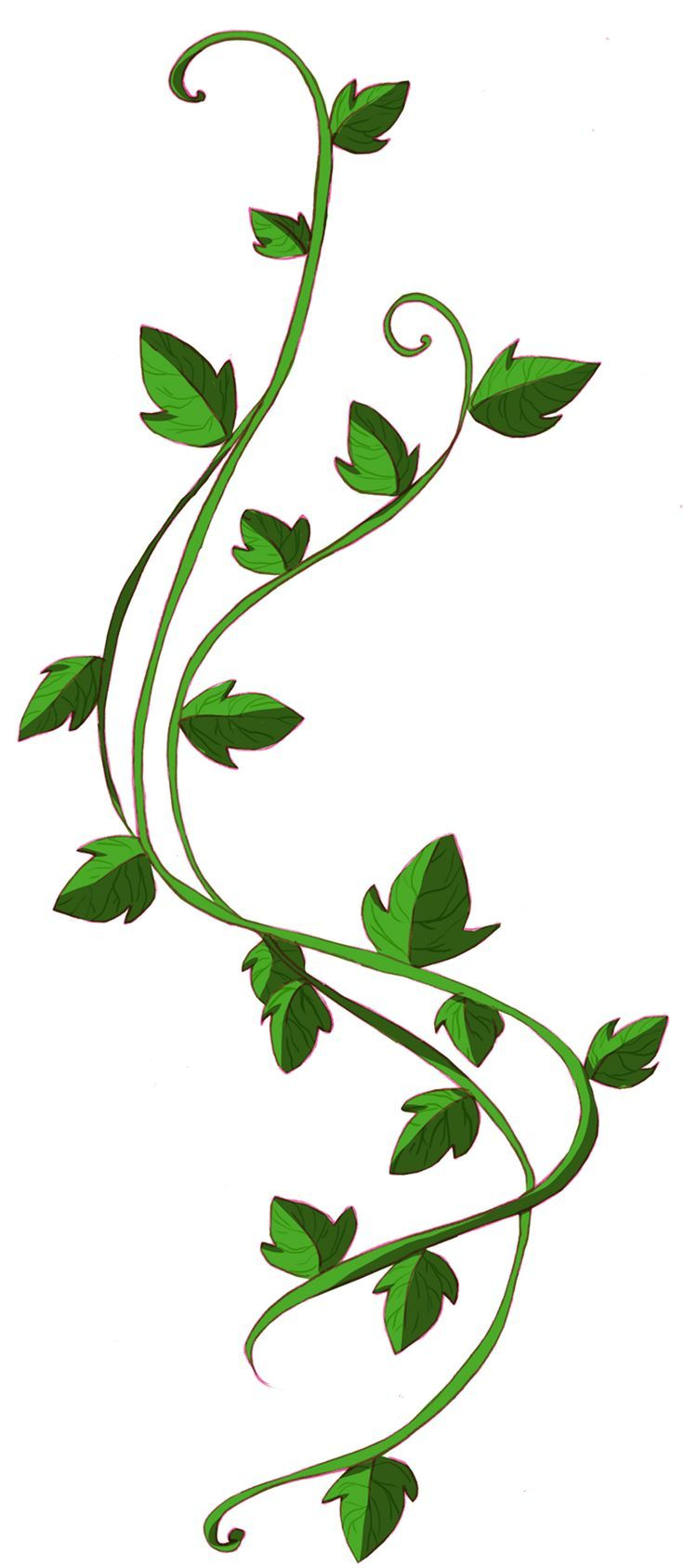 Poison Ivy Plant Tattoo 9 best Poison I...