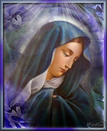 Santa María, Madre de Dios y Madre nuestra: Dios te Salve, Reina y Madre de misericordia.