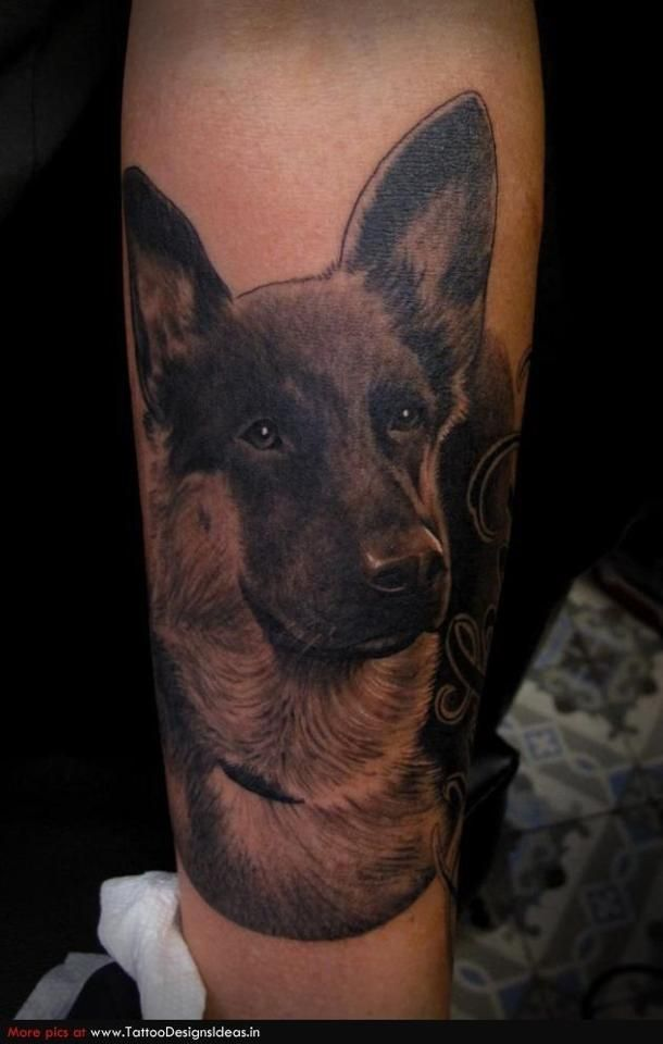 German Shepherd tattoo!