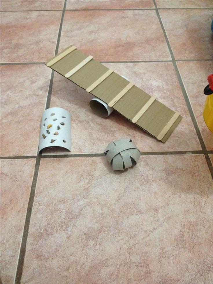 Hamster or hermit crab Diy toys!