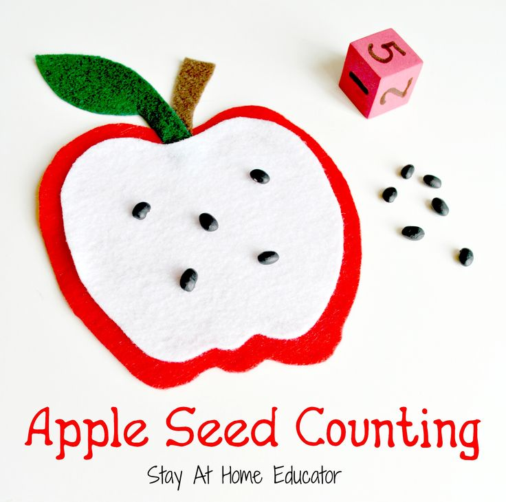 This apple seed counting activity is a simple, yet effective way to each one to one correspondence in a thematic manner, and it pairs perfectly with other apple themed preschool activities, as well as fall or autumn themes.