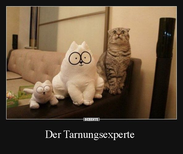 Der Tarnungsexperte.. | Lustige Bilder, Sprüche, Witze, echt lustig – Adrian Rutka
