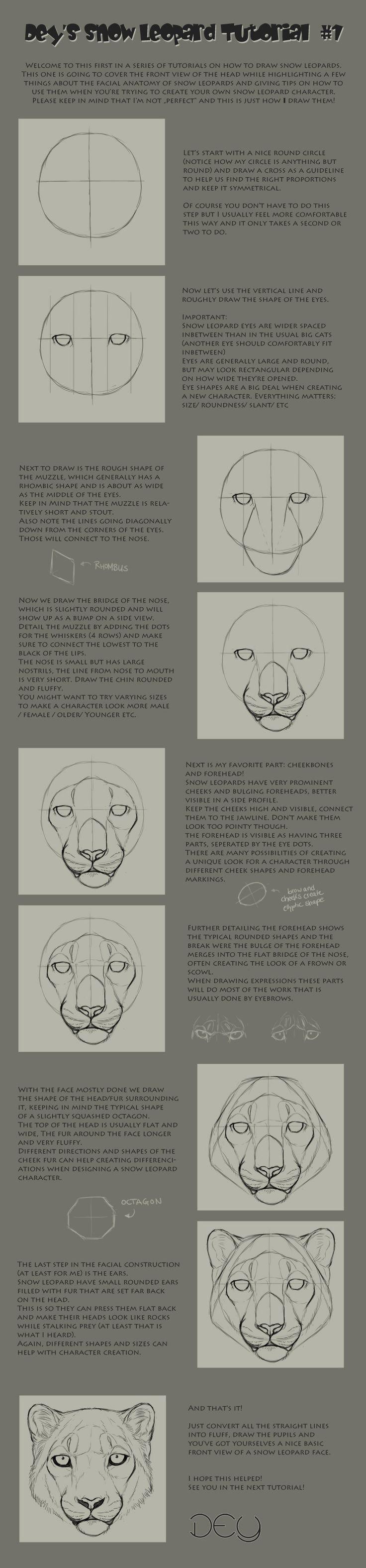 Tutorial: Snow Leopard Head #1 By Deyvarahiantart On @deviantart