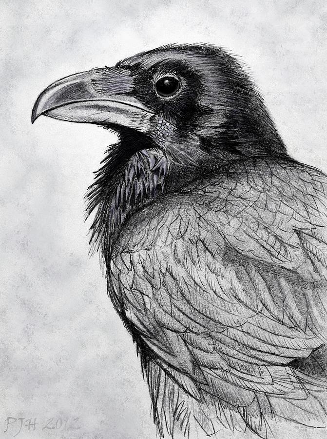Смешные мама, картинки с воронами нарисованные