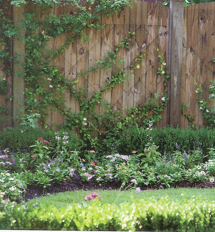 Superb Add A Climbing Vine To A Wooden Fence For Vertical Interest. Lowes.com Has.  Fence GardenGarden TrellisWall ...