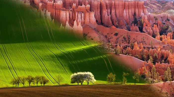8 Fotografi Alam yang Keindahannya Bak Lukisan, Padahal Nyata Ada!