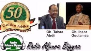 Gadaa.com   FinfinneTribune RAB: Interview with Ob. Ibsaa Guutama and Ob. Xahaa Abdii, Former Youth Members of the Macha-Tulama Association  