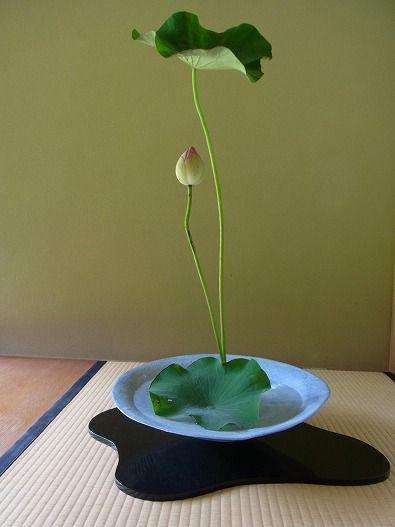 So beautiful !!  華道御室流 松韻亭:じねん社長日記 don't take a lot of flowers to makeba beautiful bouquet