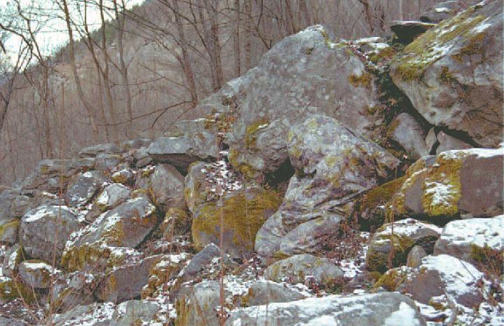 Jerven Fjellduken Original | Jervenbag mountain camouflage It's really works!