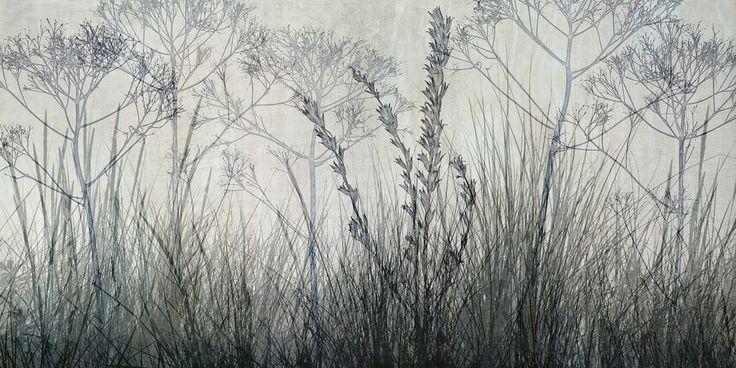 Wildflowers Lining the Trail - Bluegrey - photo-wallpaper