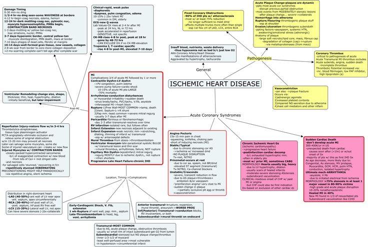 Ischemic Heart Disease.cmap (1802×1212) | c-maps ...