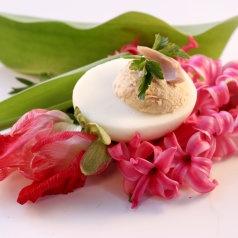 jajo + tuńczyk