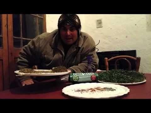 Cómo germinar semillas gelatinosas como la Chía, la Linaza, el Berro y la Arugula. - YouTube