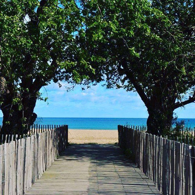 La #plage de Pardigon n'attend plus que vous #Cavalaire #mycavalaire #soleil…