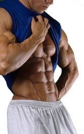 Trenbolone is one of the muscular steroids available and should be used properly and carefully. Parabolan exerts strong anabolic and androgenic qualities and does not readily convert to estrogen.
