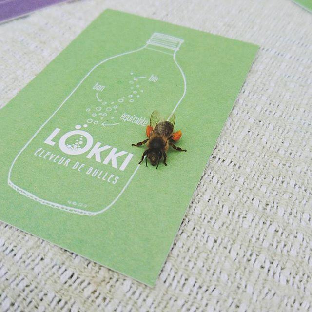 Busy bee likes Lökki  #nature #love #hustlehard #itsthelittlethings #gratitude