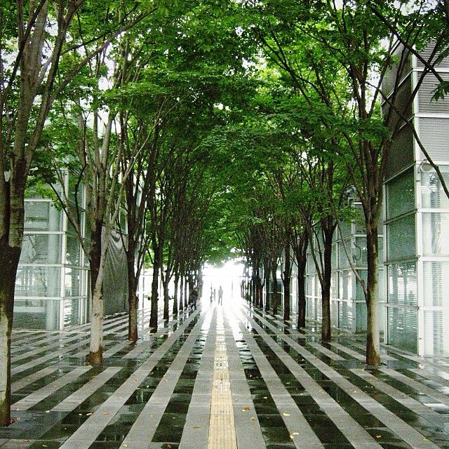 Keyaki hiroba saitama new urban center saitama city for Japanese landscape architecture