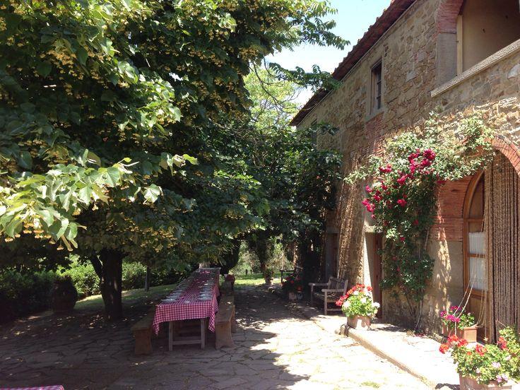 Lunch@ fattoria La Vialla