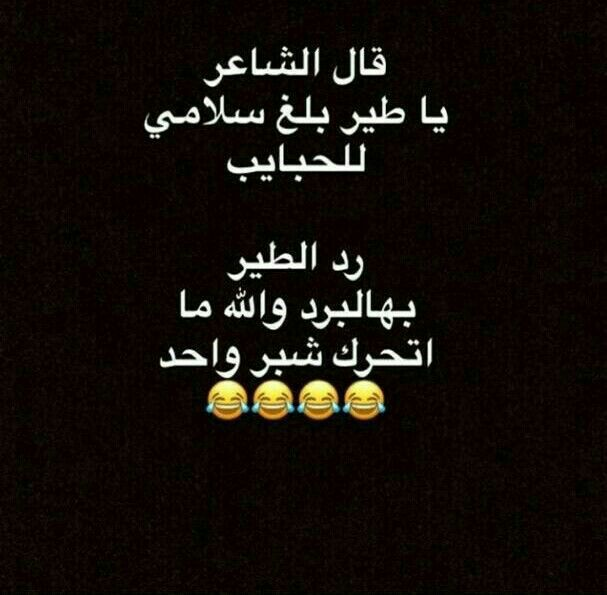 Pin By Frody On بالعربي Funny Arabic Quotes Arabic Funny Funny Quotes
