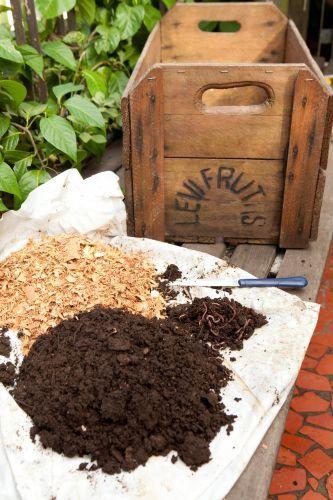 Compostagem: transforme o lixo orgânico em adubo natural para as plantas - Casa e Decoração - UOL Mulher