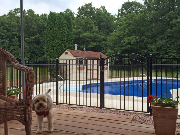 16 Best Swimming Pool Fence Styles Images On Pinterest