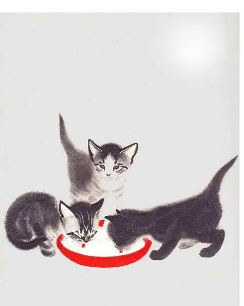 Il gatto lecca raggi di luna nella scodella dell'acqua pensando che siano latte. Proverbio indù