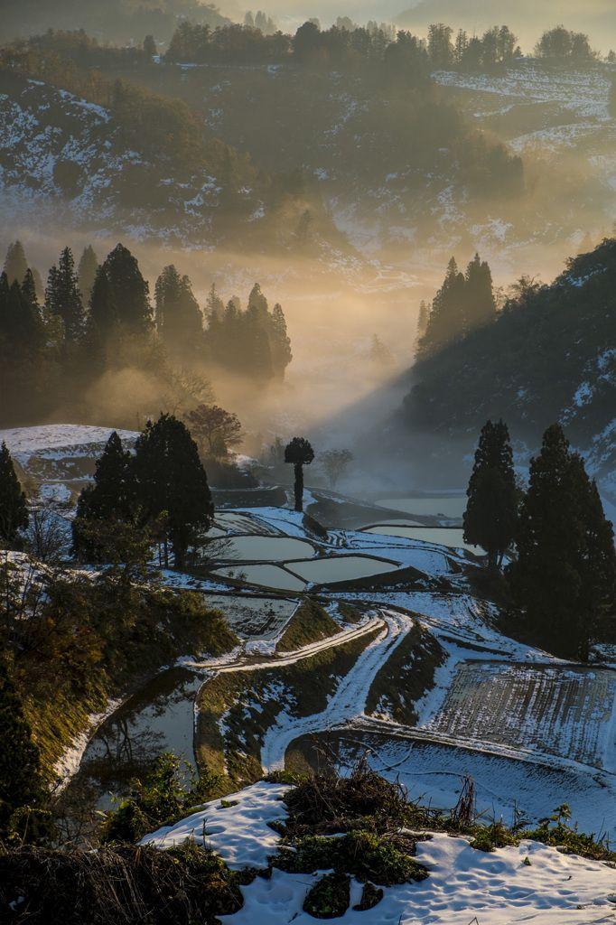 **Sunrise - Snow and Ice in Rice Terraces, Yamakoshi-Nagaoka, Niigata, Japan
