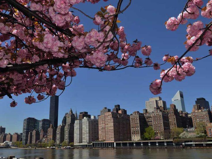 Tutti i monumenti più belli e conosciuti di New York. Un tour nei luoghi da vedere della Grande Mela, tra un tour nel Central Park e una visita a Coney Island...
